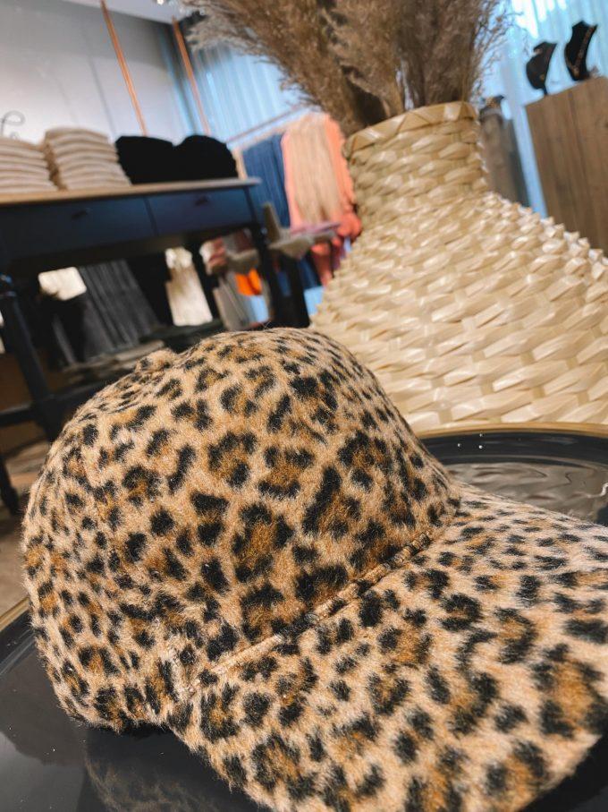 Pet leopard.