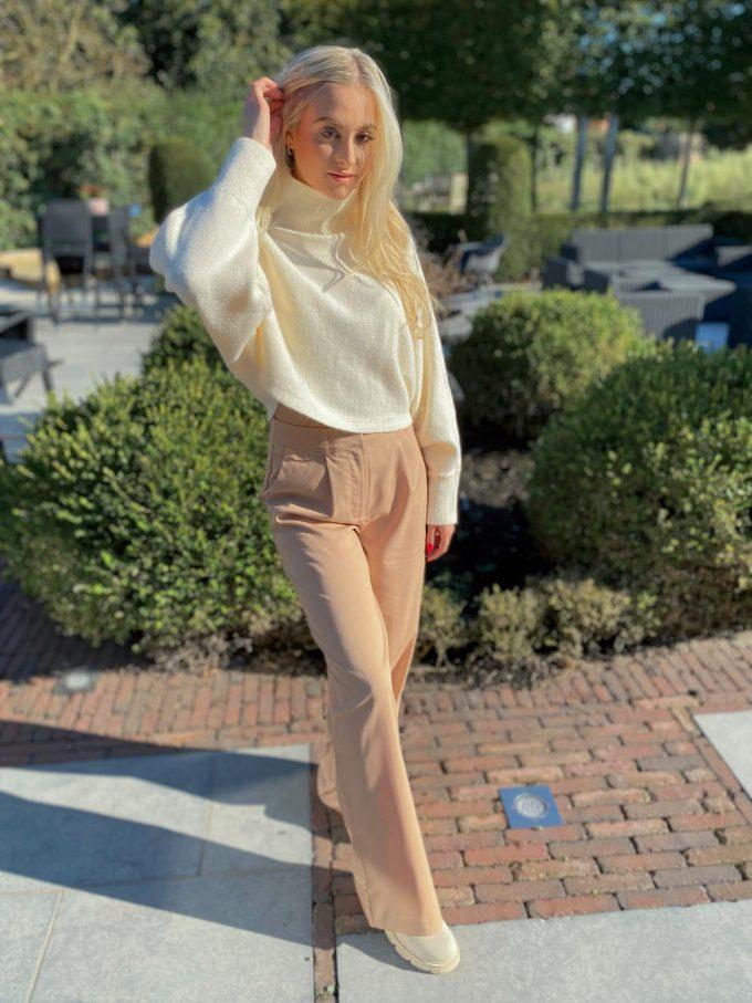 Wide Leg Suit Pants.